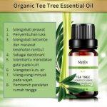 minyak essential oil tea tree